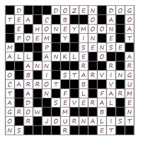 Unit 9 Crossword answer