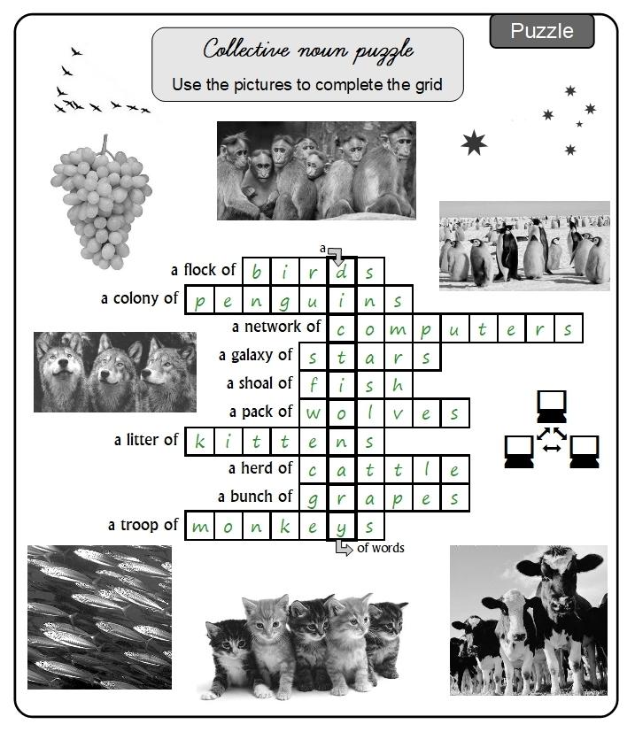 Unit 14 Puzzle answer