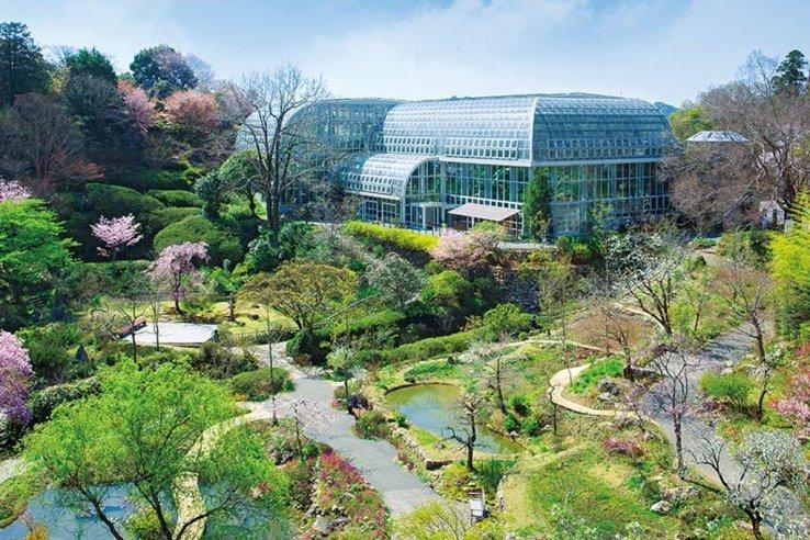 Makino Garden, Kochi, Shikoku, Japan