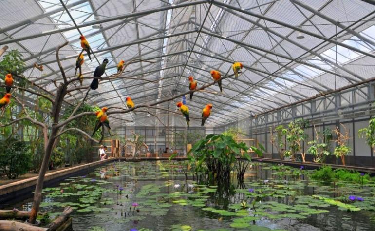 Bird and Plant Park, Kakegawa