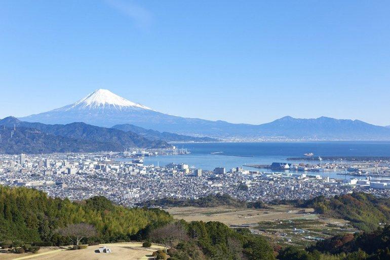 Mt Fuji from Nihondaira, 2020